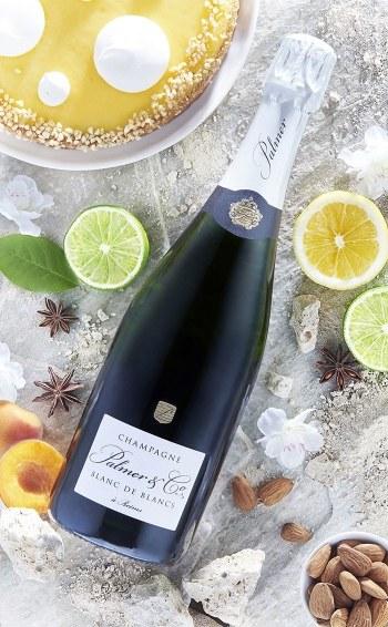 Champagne Blanc de Blancs Magnum en étui - Mise en situation
