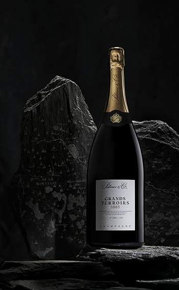 Champagne Grands Terroirs 2003 Magnum en coffret - Mise en situation