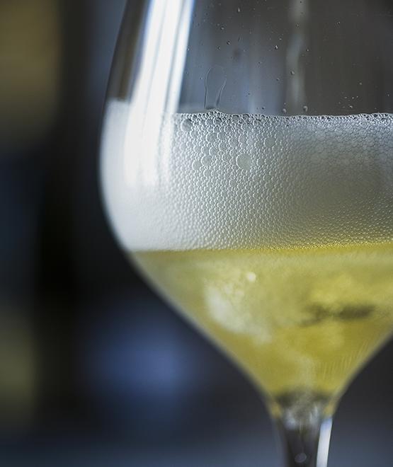 Champagne Vintage 2008 Magnum