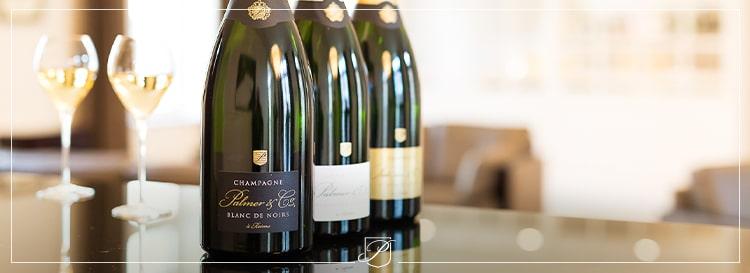 Le champagne Blanc de Noirs Palmer & Co : un festival de couleurs