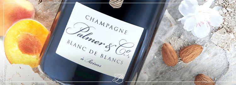 Accorder le champagne Blanc de Blancs : de l'apéritif au repas
